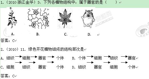 植物体的结构层次